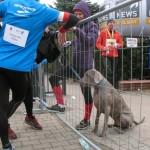 2014.03.01 Maraton 284